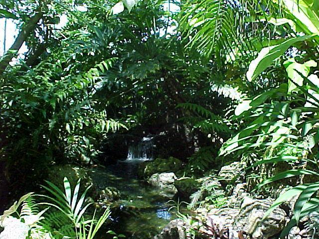 Tropical Landscapes, Subu003dtropical Landscapes, List, Pictures And Articles